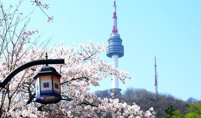 Corée du Sud, Une destination populaire pour les vacances pendant toute l'année