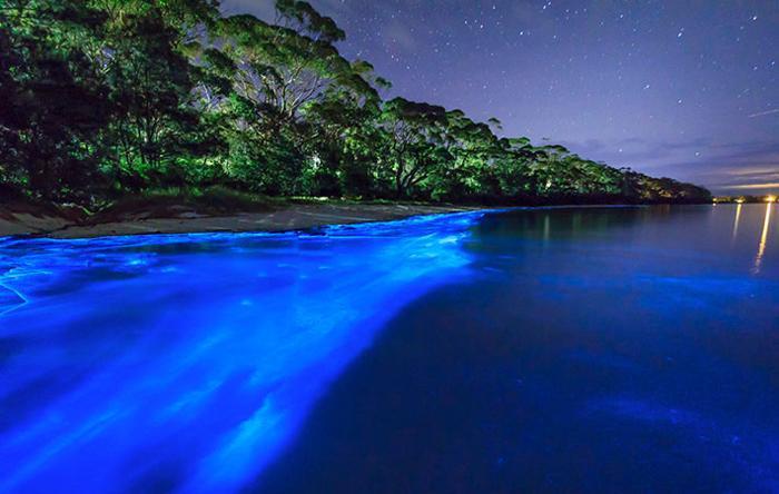 Les vacances magiques et exotiques aux Maldives
