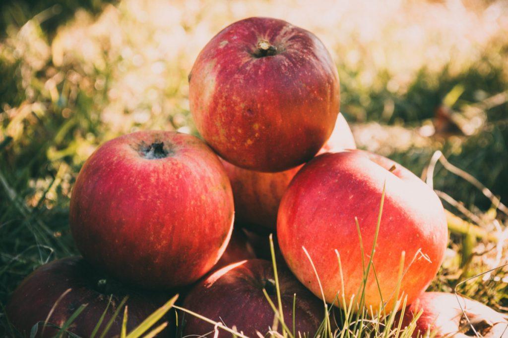 Livraison de corbeille de fruits paris: une activité qui se développe