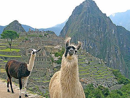 Aspect Naturel pour les vacances au Pérou