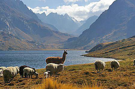 Les vacances au Pérou, un pays en Amérique du Sud n'étant jamais de pleuvoir