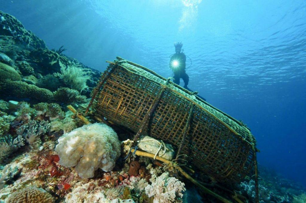 Comment rester en forme pendant des vacances de plongée à Bali?