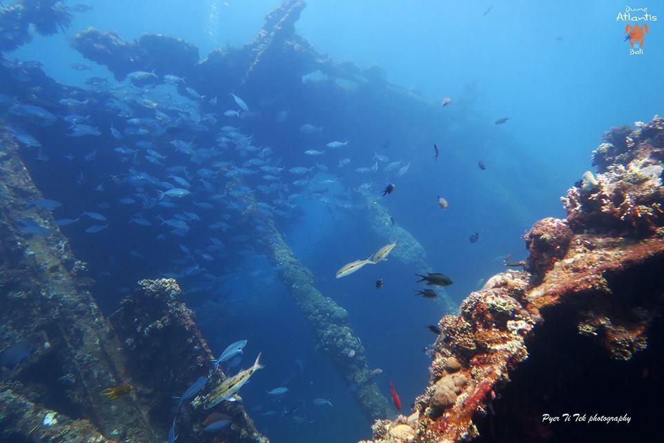 Epave bali tulamben, un spot de plongée incontournable