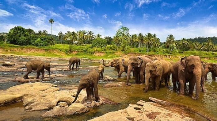 Lampung, une province à Sumatera qui attire beaucoup de touriste